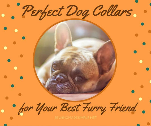 Perfect Dog Collars for Your Best Furry Friend•Sewing Made Simple