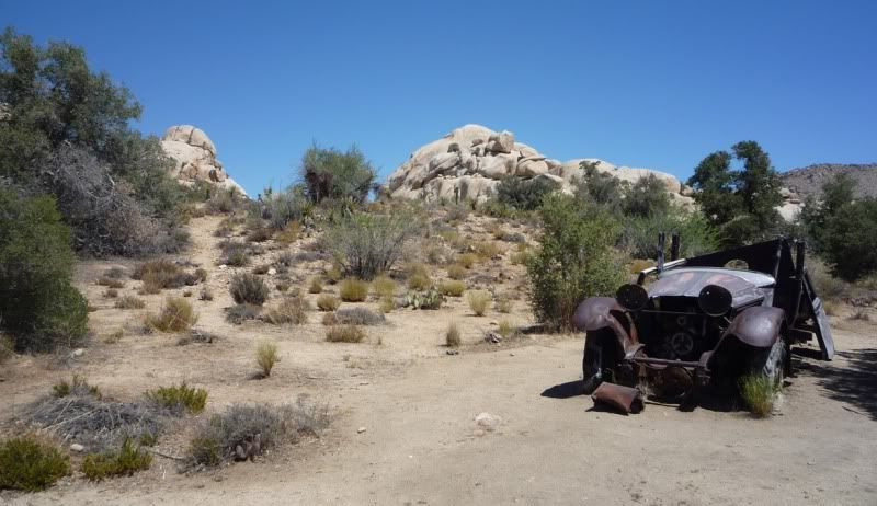 joshua tree national park gay dating site Joshua tree national park - one of california's true gems oct 17, 2017 1842  if there's one museum to carve out time to see, it's the world-class national museum of anthropology  close by zona rosa is a lively gay-friendly – tourist-friendly area that's condensed enough within a few blocks and avenues to make a night out on the.