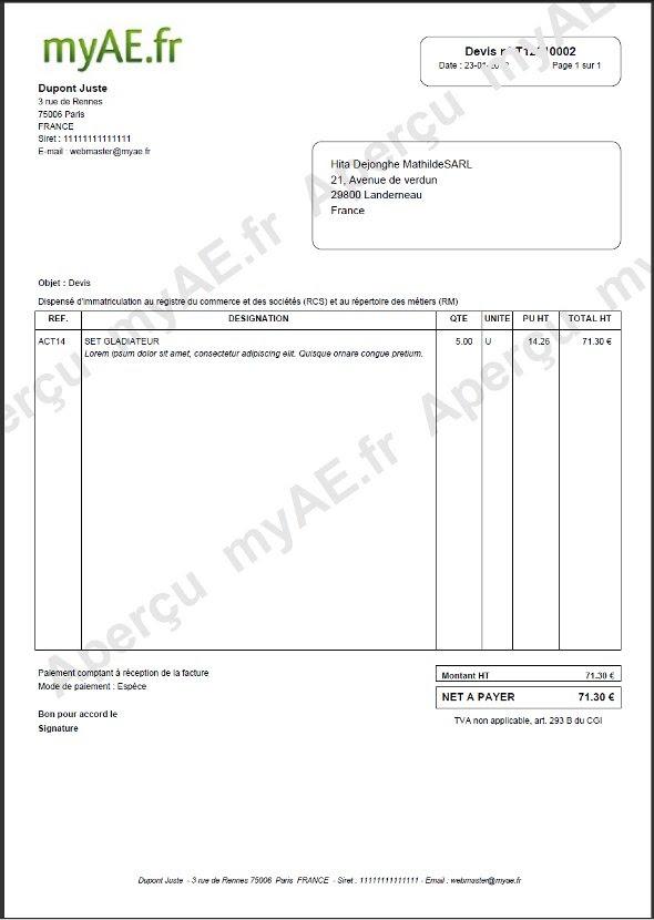 Exemple Devis Auto Entrepreneur Excel