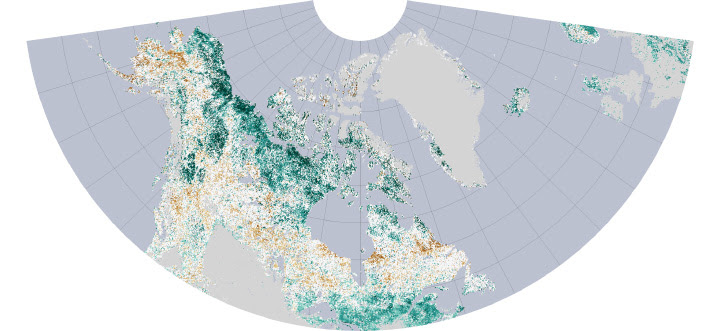 The Greening Arctic