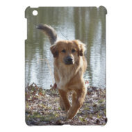 Golden Retriever iPad Mini Cases