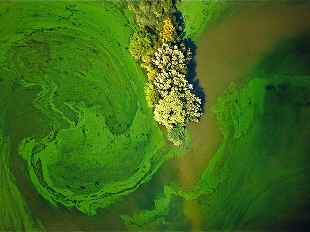 Esta foto da fábrica de herbicidas em Louisiana foi batizada de 'Gangrena' por Fair, que participa de diversas organização de proteção e educação ambiental.