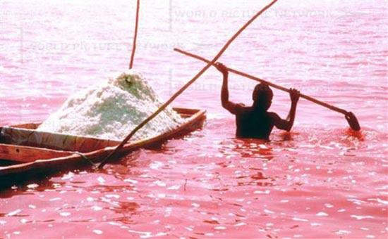 Ροζ λίμνη στη Σενεγάλη (1)