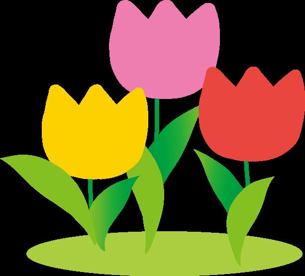春 チュリップのイラスト 無料イラスト