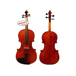D'Luca PDZ02-14 14-Inch Orchestral Series Viola Outfit