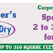 Professional Carpet Cleaners vs DIY - Snyder's Chem-Dry