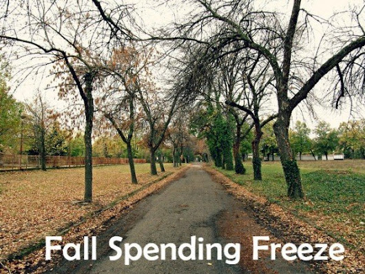 Fall Spending Freeze Challenge - The Write Budget