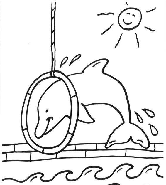 delphin malvorlagen zum ausdrucken hd  kinder zeichnen
