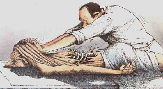 Deep Tissue Massage vs Deep Pressure Massage | Performance Bodywork