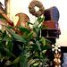 Scilla virág és ajándékbolt
