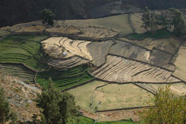 Village de Pampamarca à une 10e de km de Cotahuasi en ligne droite mais 2heures de combi