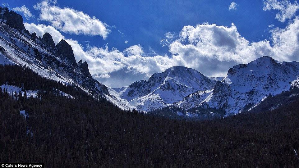 La National Wildlife Refuge Arapaho dans le Colorado a une impressionnante ligne de pin qui se étend sur des miles