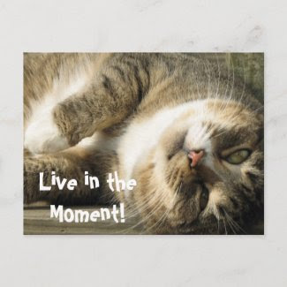 Live in the Moment! postcard