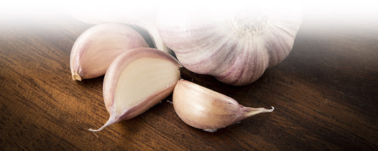 Dehydrated Garlic Products And It's Application