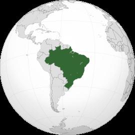 DIRECTOR/A GERAL (M/F) | BRASIL