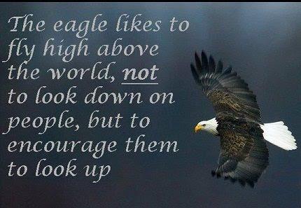 Death Soaring Eagle Quotes Wwwpicsbudcom