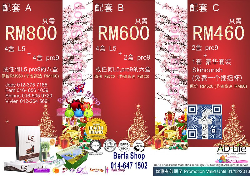 2013 Christmas New Year Berfa Shop 7 Chinese