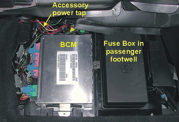 1990 Corvette Fuse Box Location Dicot Seed Diagram And Function Begeboy Wiring Diagram Source