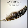 Top 10 Things to Love About Guineas - Green Eggs & Goats