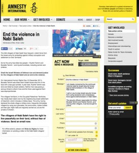 From Amnesty's web site
