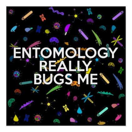 ENTOMOLOGY REALLY BUGS ME POSTER