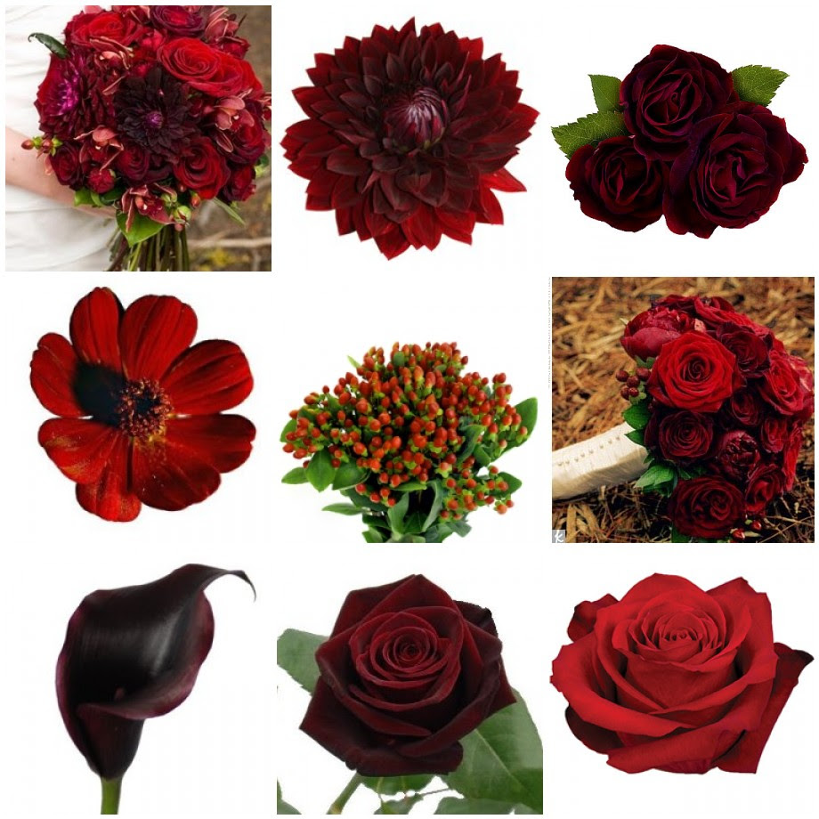 Types Of Red Wedding Flowers