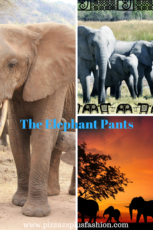 Can You Save Baby Elephants And Be Fashionable too?
