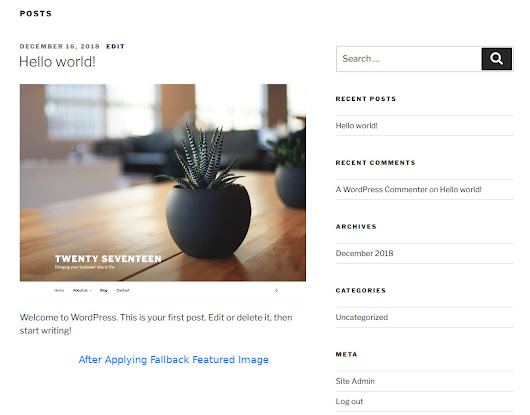 How To Add Fallback Featured Image In WordPress Theme | NapitWPTech