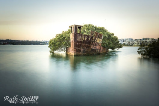 Shipwreck Graveyard at Homebush Bay, Sydney Olympic Park