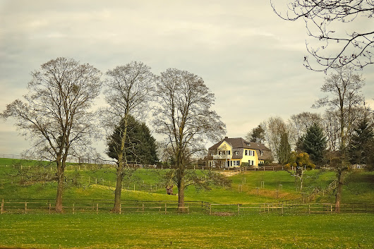 Rural Living: An Honest List of Pros and Cons - LandCentral