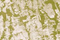 2006年同一地區雨林的衛星影像,顯示雨林迅速消失
