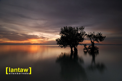 Maasim Serene Dawn 2