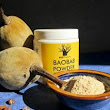 See 20 Importance Of Baobab Fruit Powder In The Body | HEALTHPOZT