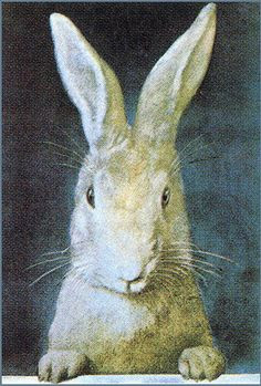 bunny art from Zsa Zsa Bellagio.blogspot.com & repinned from J. Hamilton