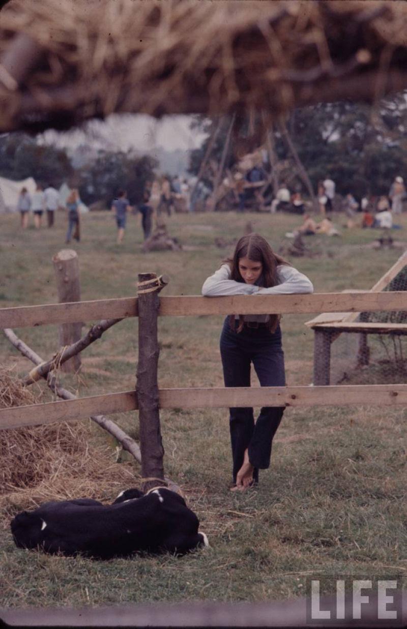O festival de Woodstock em números e imagens 57