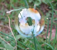 Macro bubble
