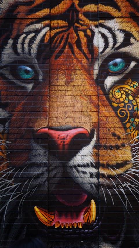 خلفية النمر الملونة بدقة عالية hd