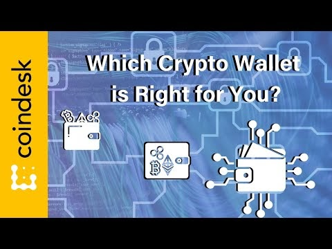 Which Crypto Wallet Should You Choose