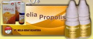 Melia biyang dan Melia propolis