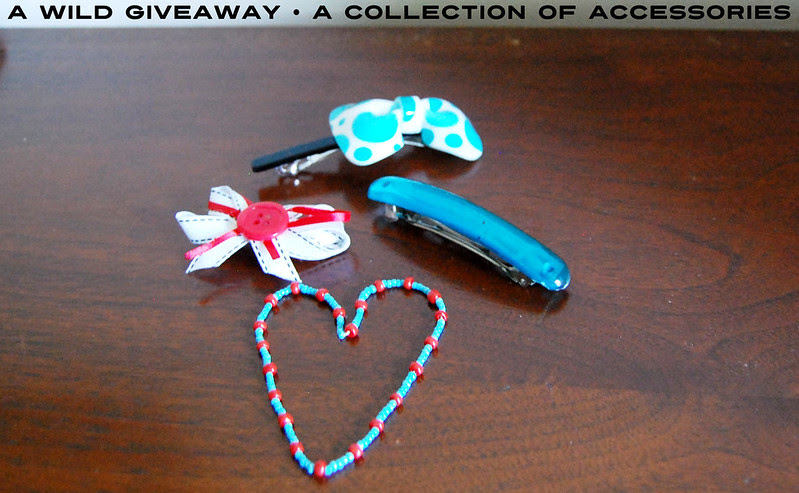 a wild giveaway • a collection of accessories!