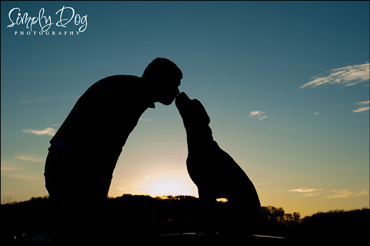 Fall Outdoor Dog Photography Session Dublin Ohio | Eva, James and Reed