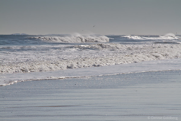 a wild ocean, one day after blizzard Nemo