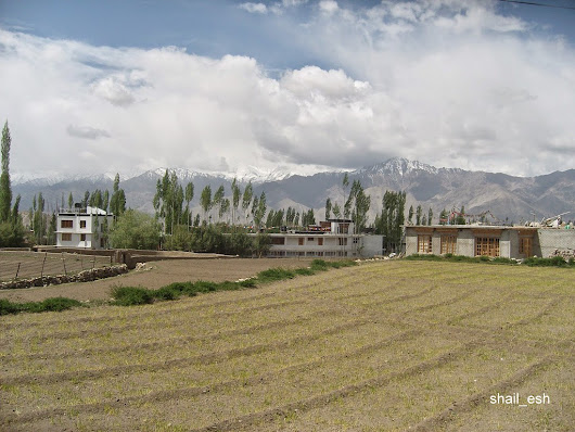 Leh-view of mountains.