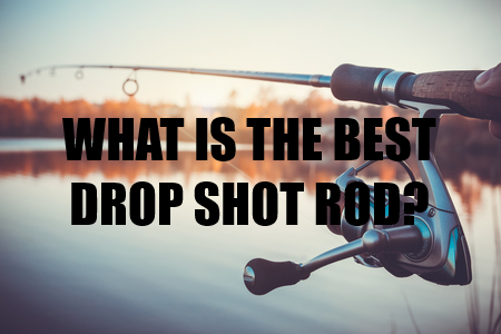 What Is The Best Drop Shot Rod? - My Top 5 Options -