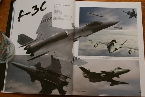 Ace Combat Master File - ASF-X SHINDEN II - 8