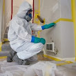 Mold Removal Services in Staten Island, NY | ServiceMaster