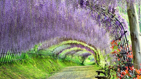 Japan's 31 most beautiful places
