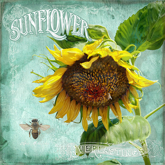 Cottage Garden - Sunflower Standing Tall by Audrey Jeanne Roberts