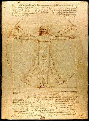 "Hombre Vitruvio ""Leonardo da Vinci"" ""Dignidad Humana"""