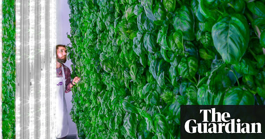 Forget Juicero, here are the tech gadgets we can actually get excited about in 2018 | Technology | The Guardian